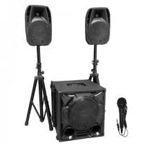 Kit subwoofer 12 inch/30cm + 2 sateliti 8inch/20cm + stand boxe + cabluri
